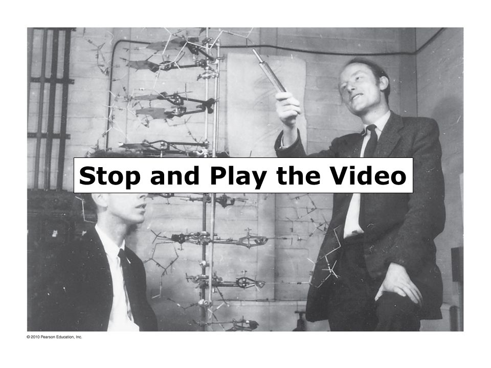 Stop and Play the Video