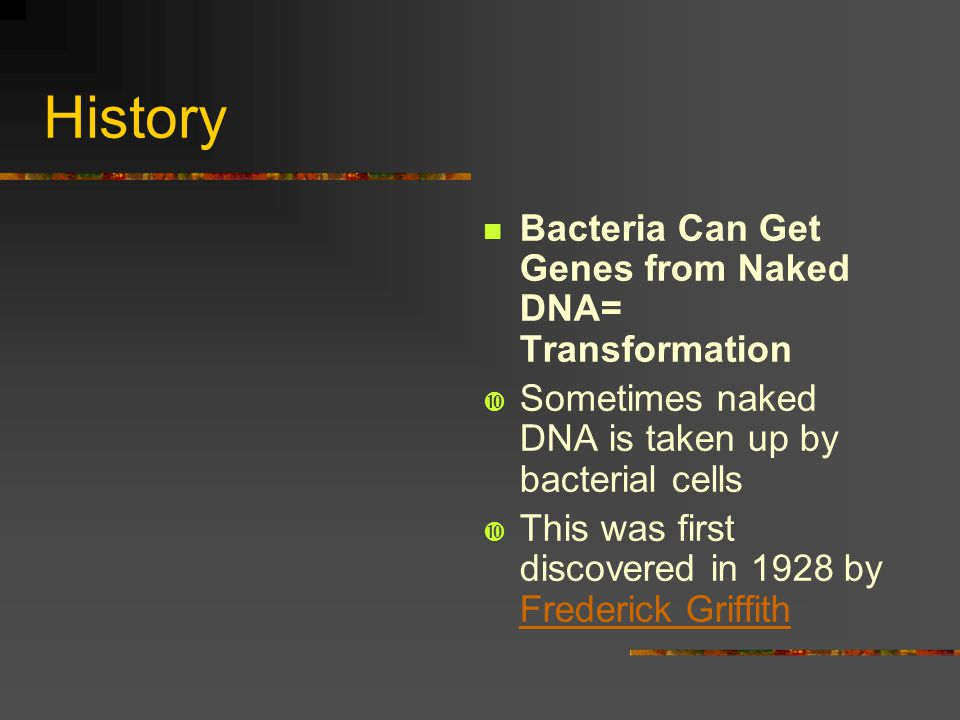 History Bacteria Can Get Genes from Naked DNA= Transformation