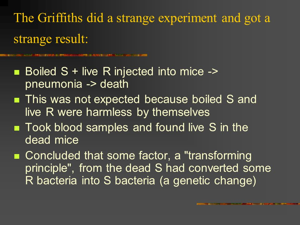 The Griffiths did a strange experiment and got a strange result: