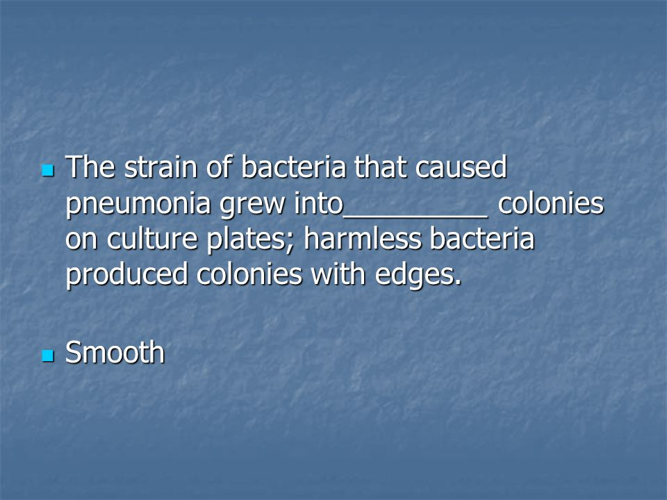 The strain of bacteria that caused pneumonia grew into_________ colonies on culture plates; harmless bacteria produced colonies with edges.