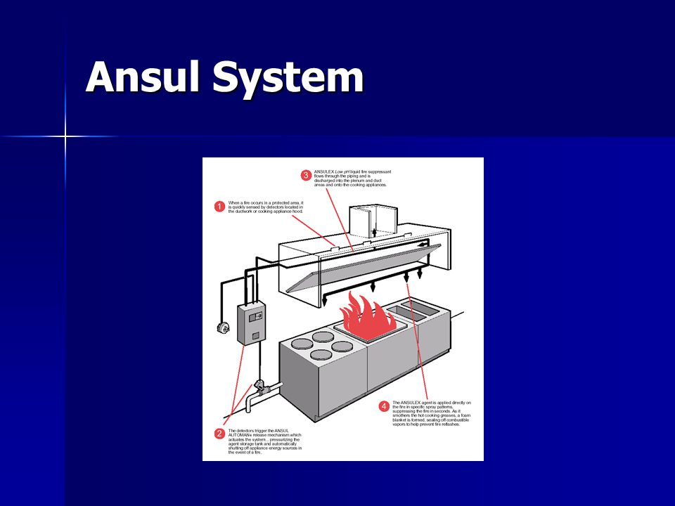 Ansul System