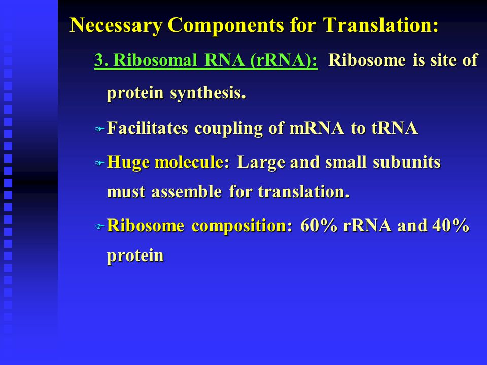 Necessary Components for Translation: