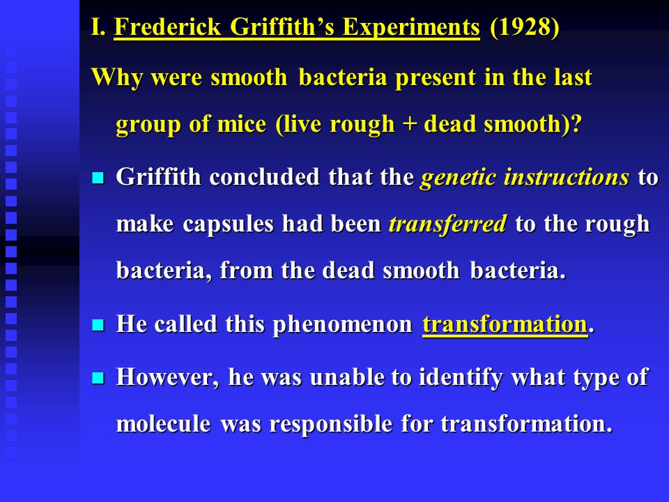 I. Frederick Griffith's Experiments (1928)