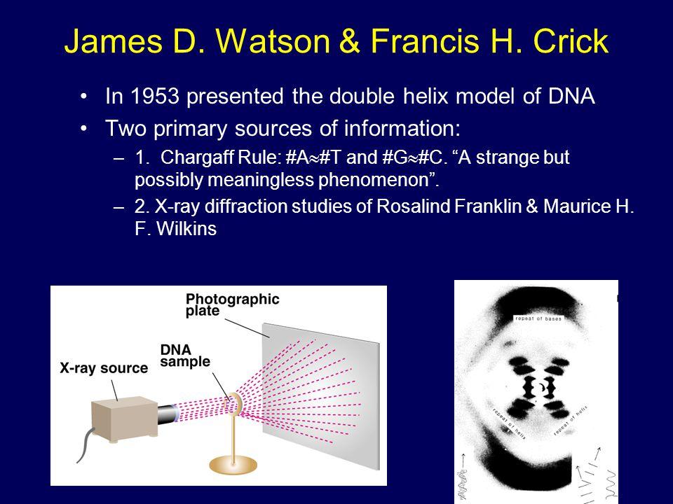 James D. Watson & Francis H. Crick