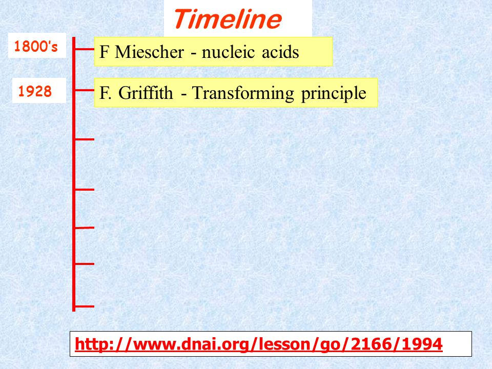 Timeline F Miescher - nucleic acids