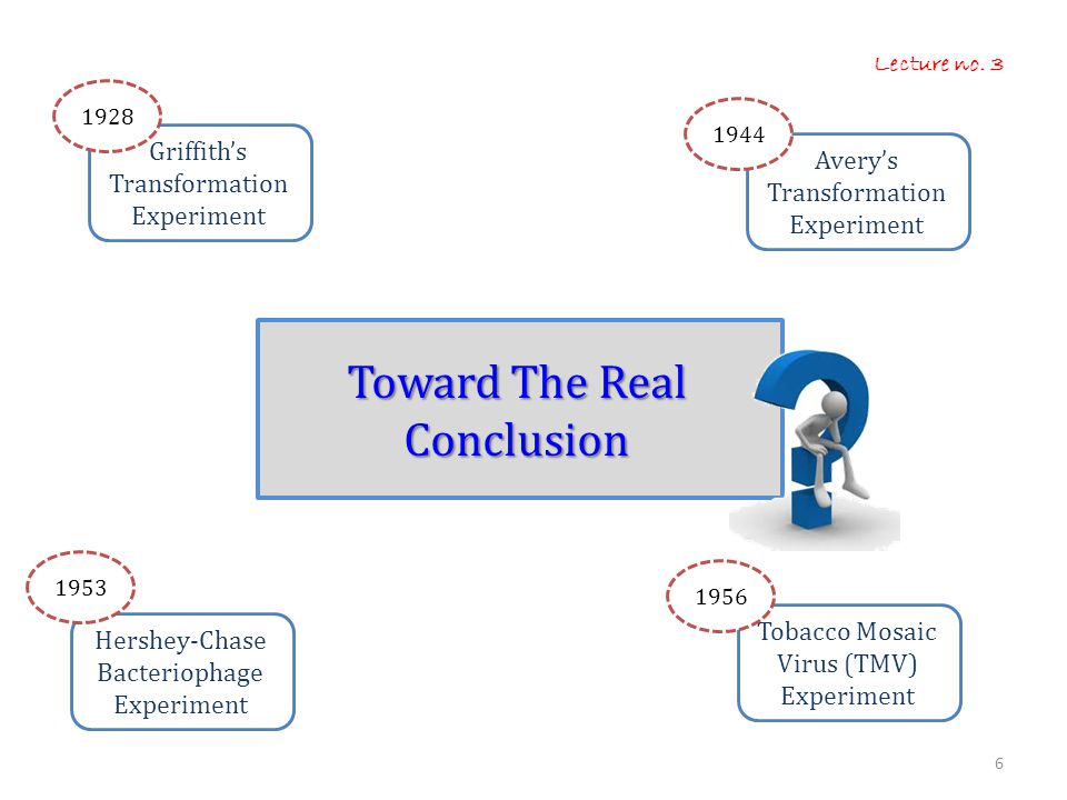 Toward The Real Conclusion
