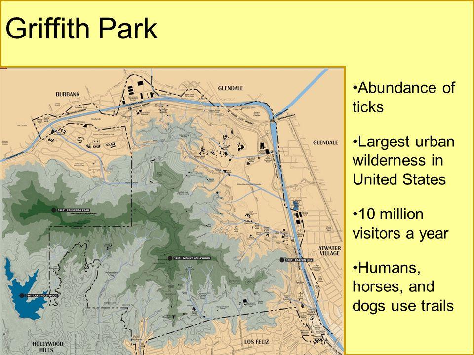 Griffith Park Abundance of ticks