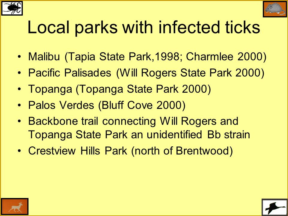 Local parks with infected ticks