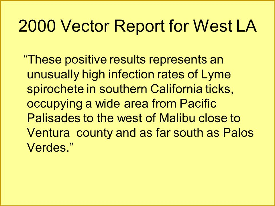 2000 Vector Report for West LA