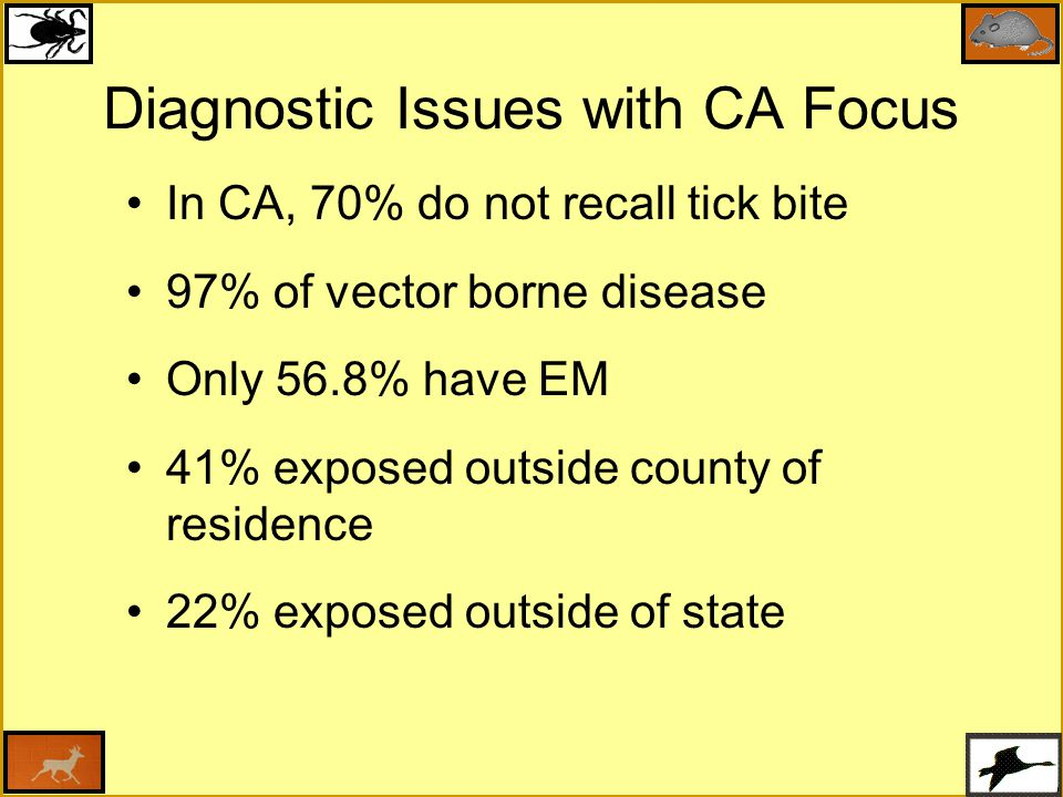Diagnostic Issues with CA Focus