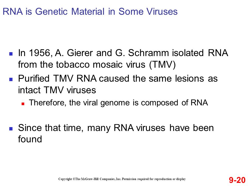 RNA is Genetic Material in Some Viruses