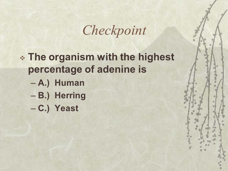 Checkpoint The organism with the highest percentage of adenine is