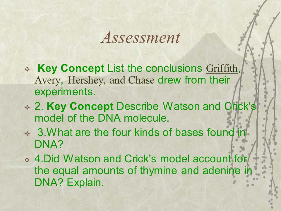 Assessment Key Concept List the conclusions Griffith, Avery, Hershey, and Chase drew from their experiments.