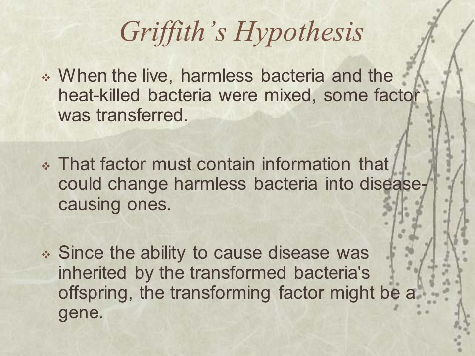 Griffith's Hypothesis