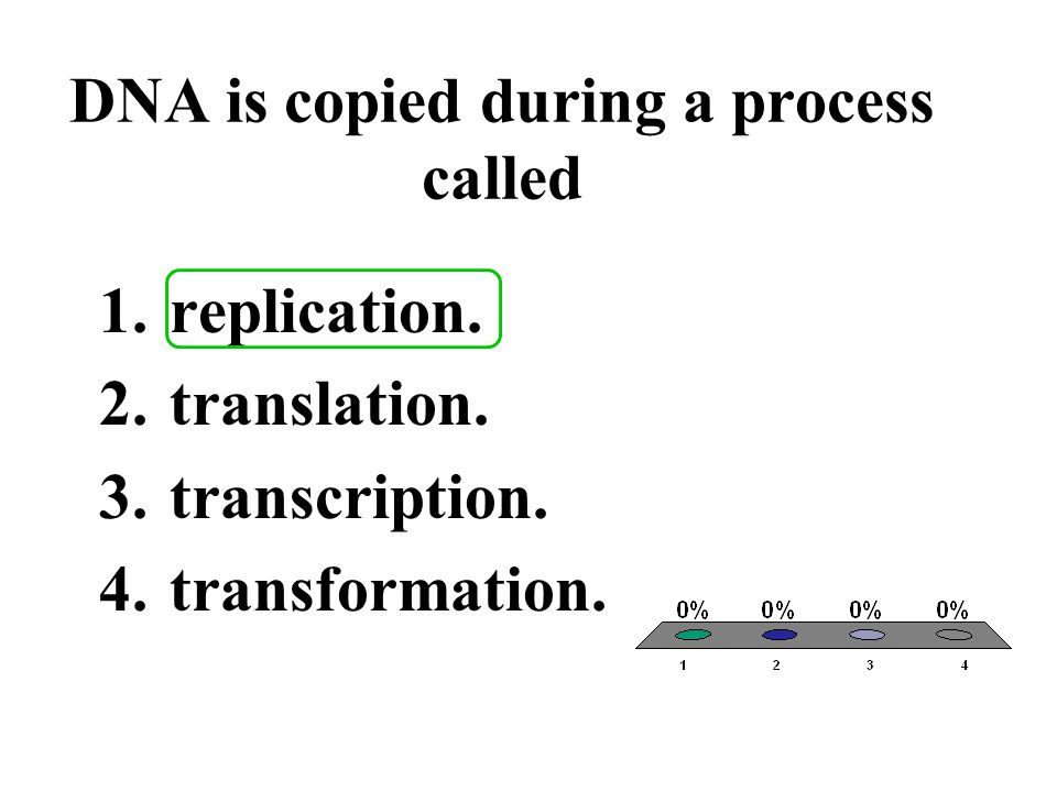 DNA is copied during a process called