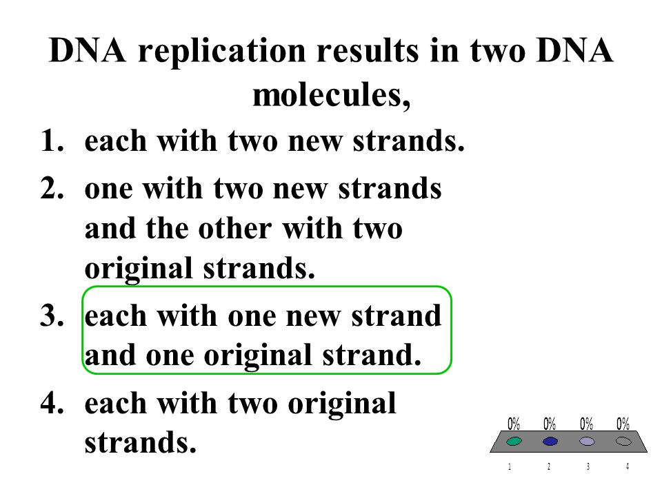DNA replication results in two DNA molecules,
