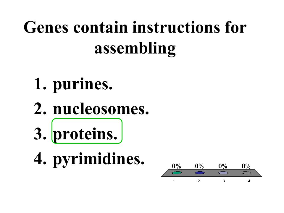 Genes contain instructions for assembling