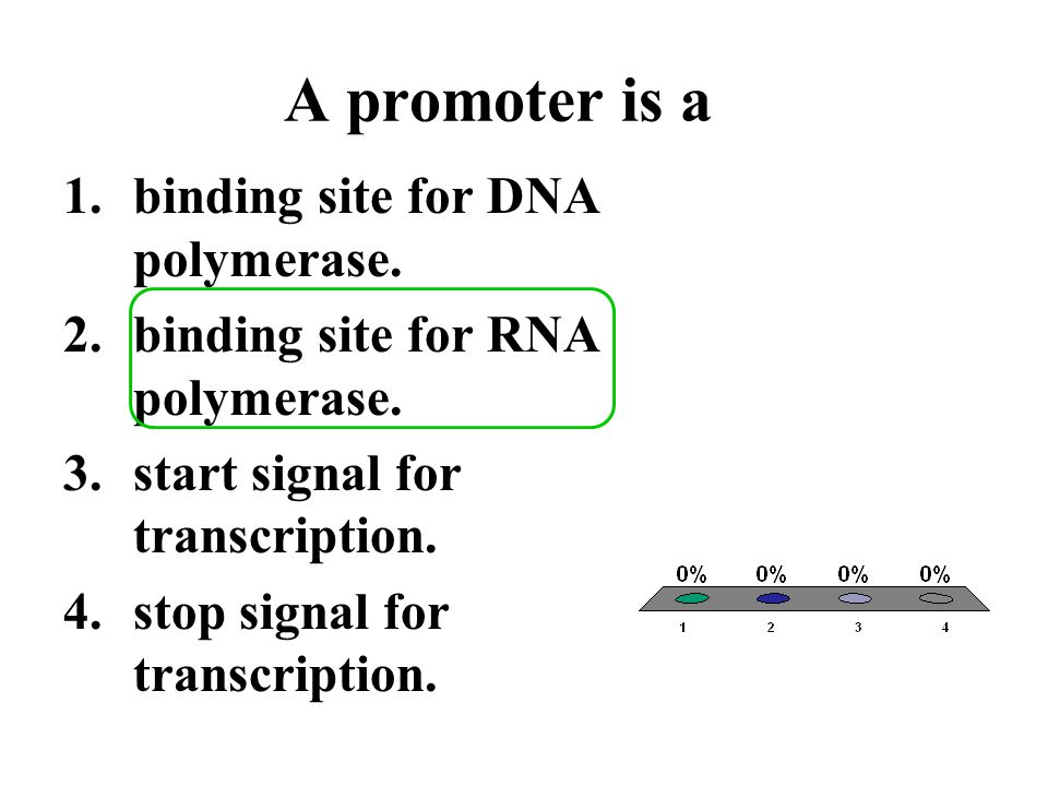 A promoter is a binding site for DNA polymerase.