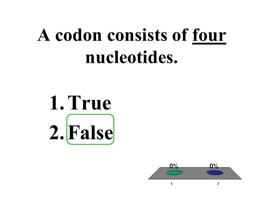 A codon consists of four nucleotides.