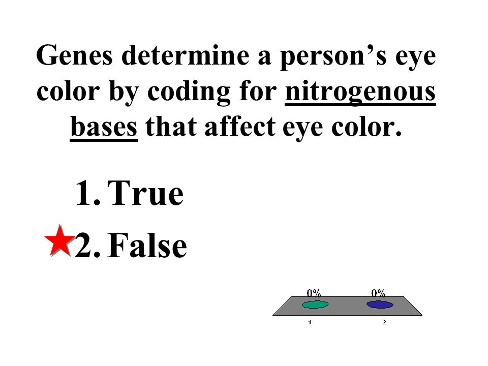 Genes determine a person's eye color by coding for nitrogenous bases that affect eye color.