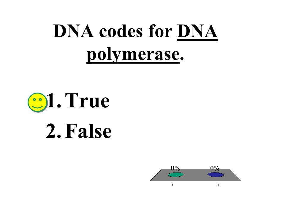 DNA codes for DNA polymerase.