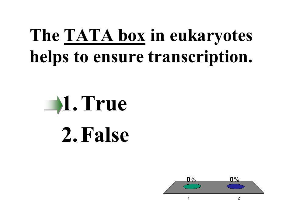 The TATA box in eukaryotes helps to ensure transcription.