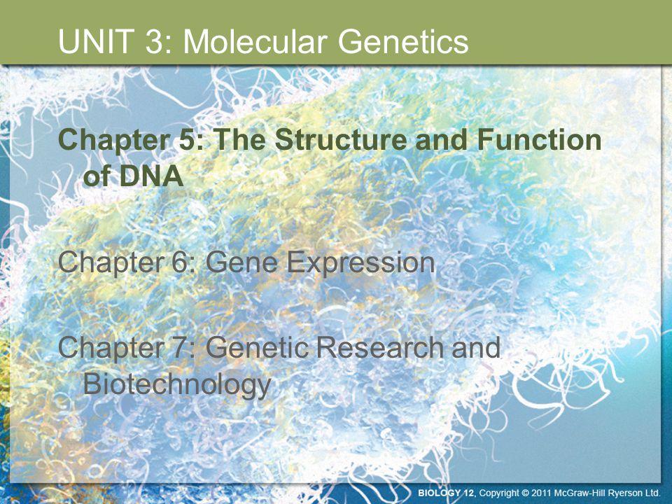 UNIT 3: Molecular Genetics