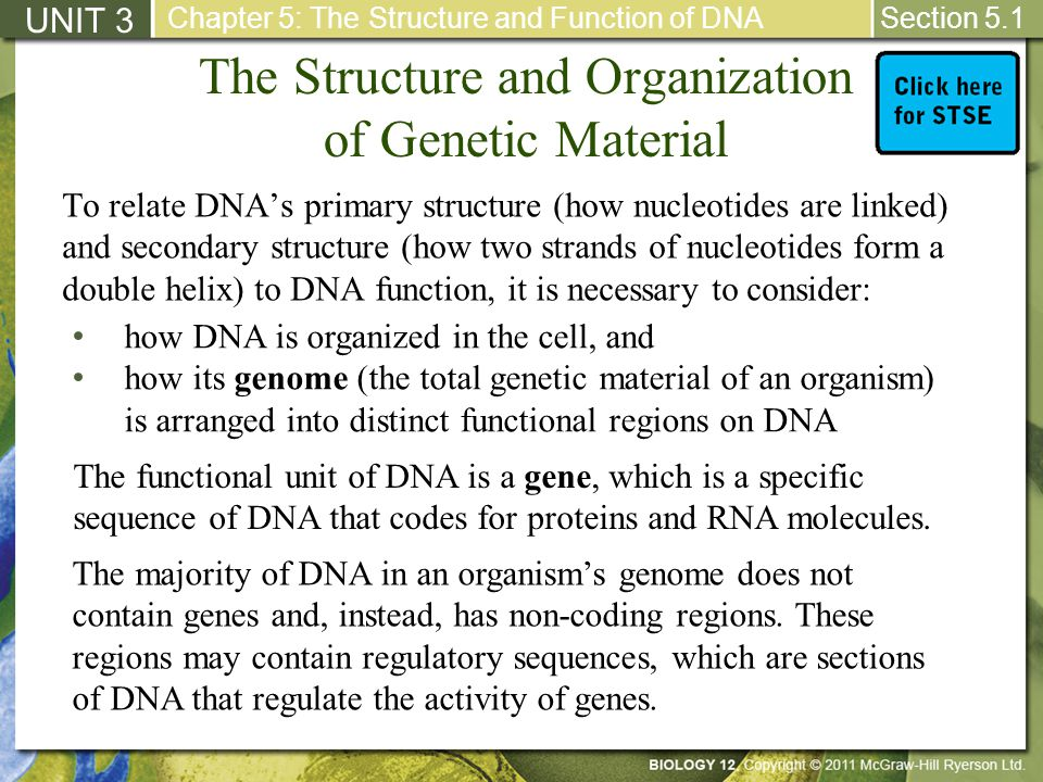 The Structure and Organization of Genetic Material