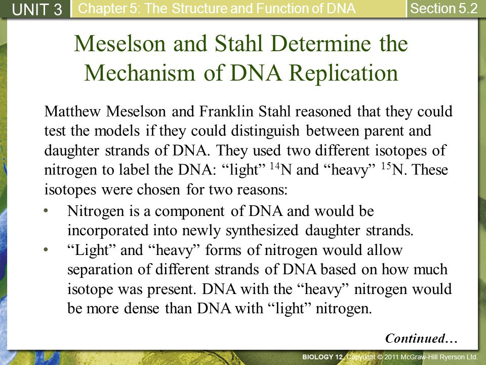 Meselson and Stahl Determine the Mechanism of DNA Replication