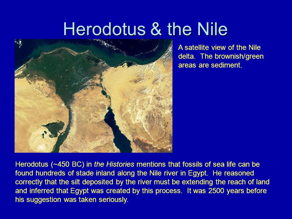 Herodotus & the Nile A satellite view of the Nile delta. The brownish/green areas are sediment.