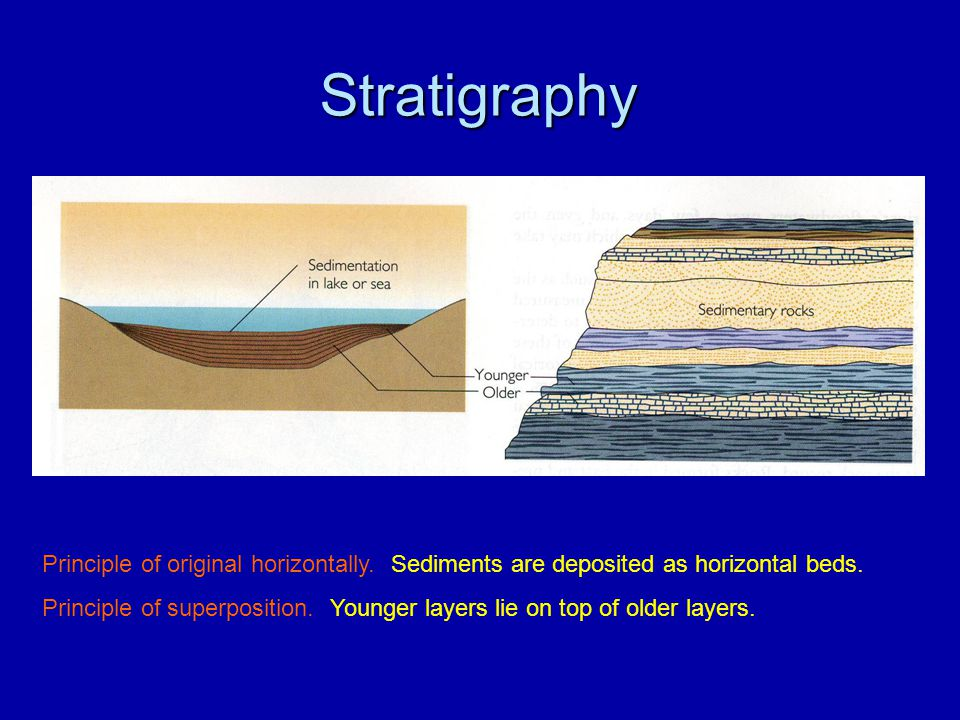 Stratigraphy Principle of original horizontally. Sediments are deposited as horizontal beds.