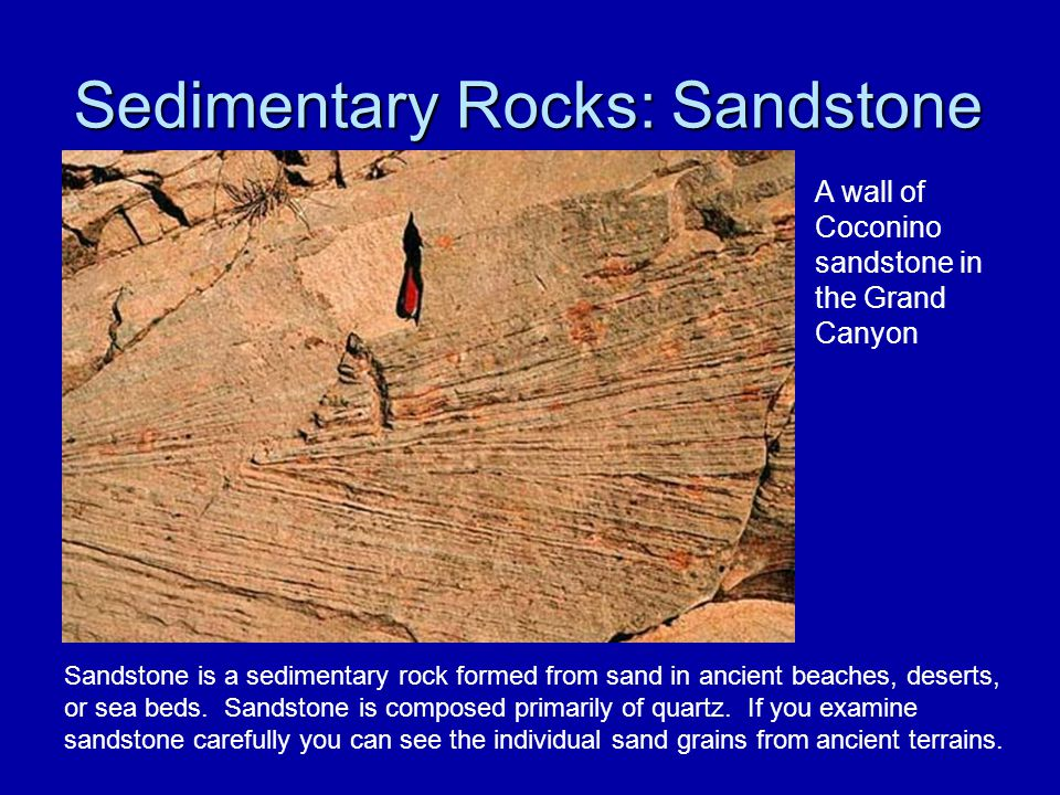 Sedimentary Rocks: Sandstone