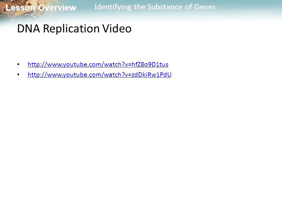 DNA Replication Video http://www.youtube.com/watch v=hfZ8o9D1tus