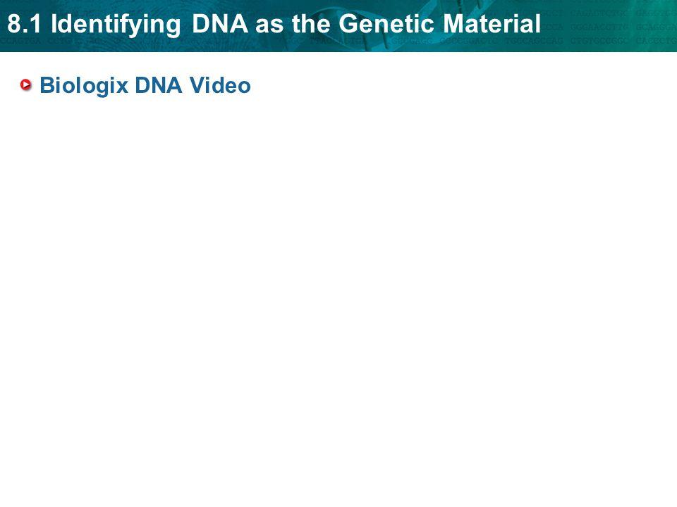 Biologix DNA Video