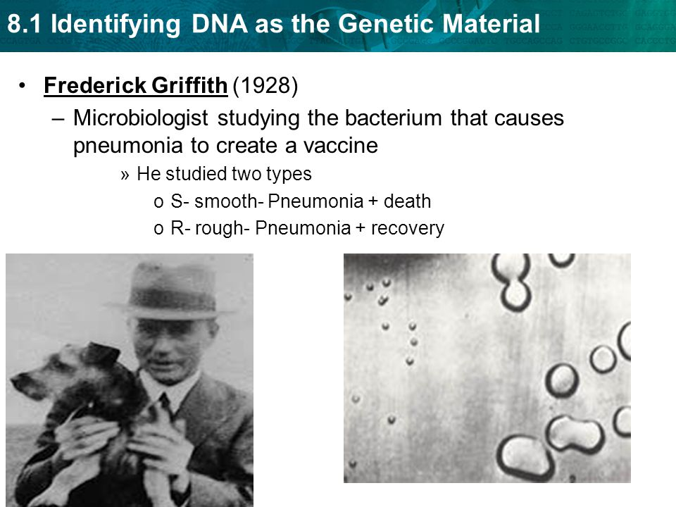 Frederick Griffith (1928) Microbiologist studying the bacterium that causes pneumonia to create a vaccine.