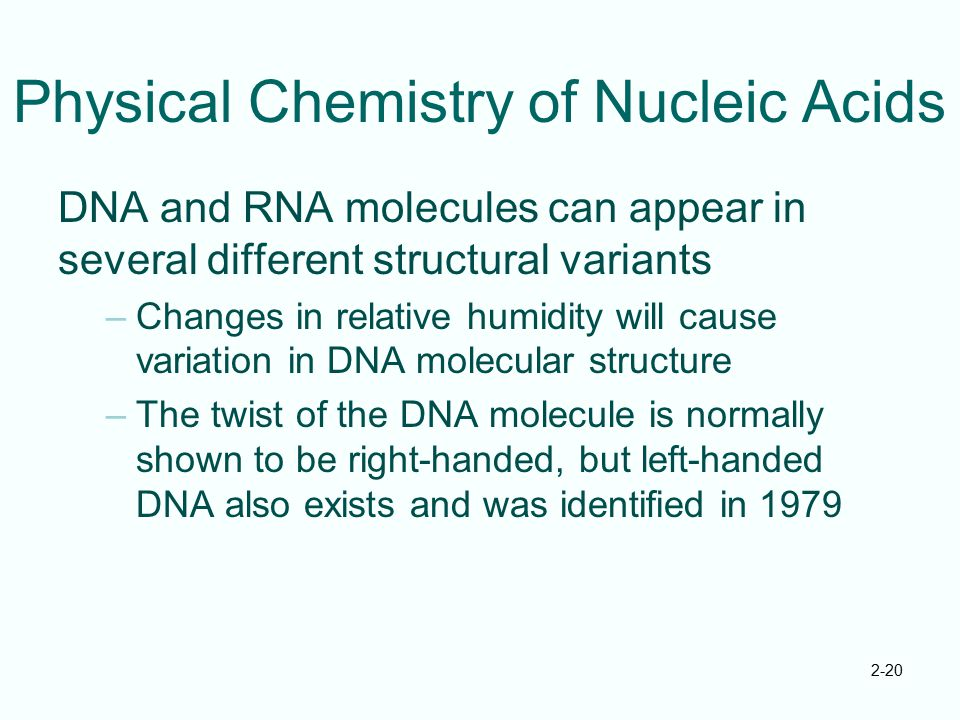 Physical Chemistry of Nucleic Acids