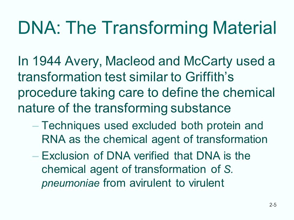 DNA: The Transforming Material