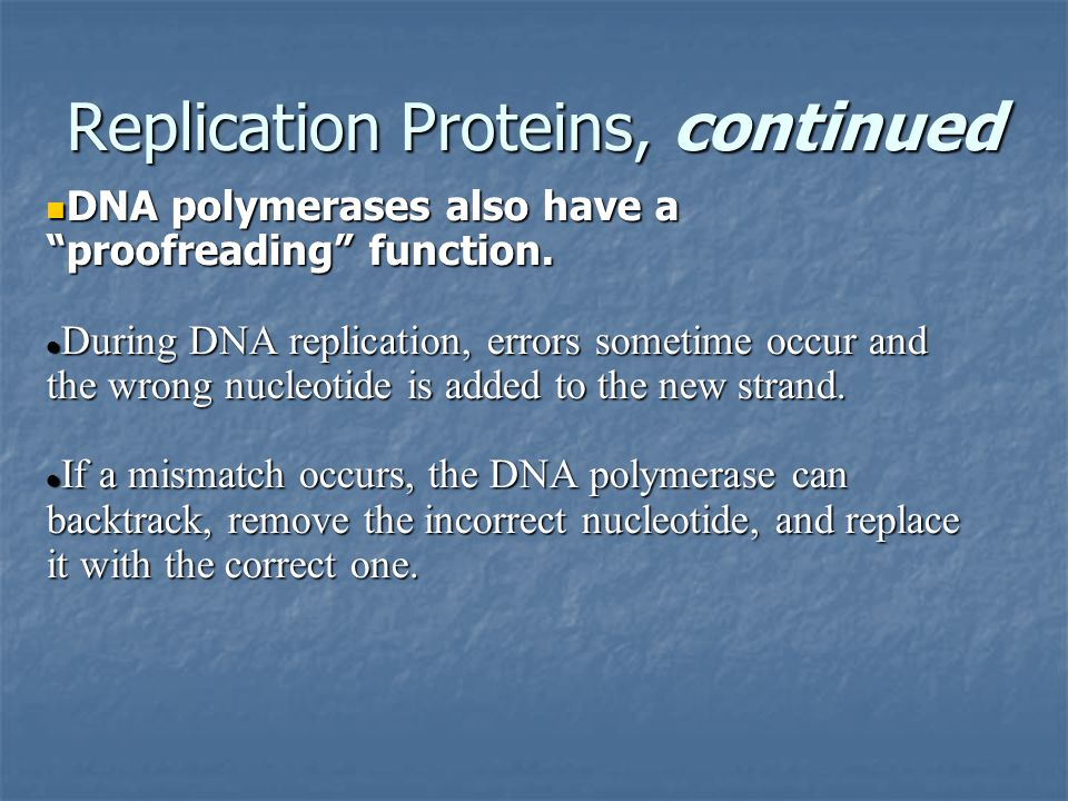 Replication Proteins, continued