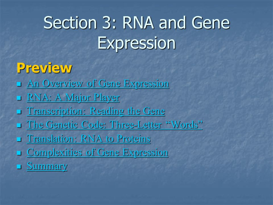 Section 3: RNA and Gene Expression