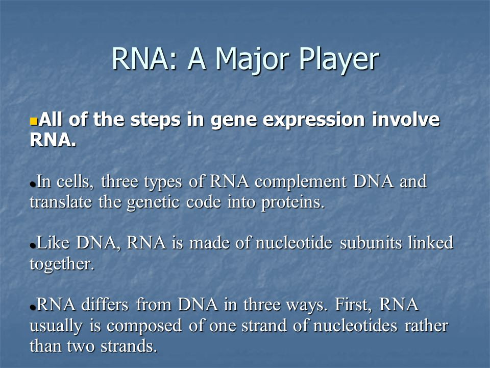 RNA: A Major Player All of the steps in gene expression involve RNA.