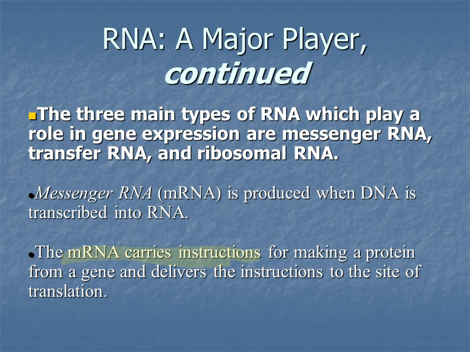 RNA: A Major Player, continued