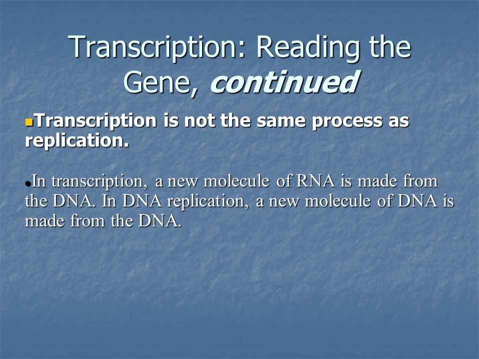 Transcription: Reading the Gene, continued