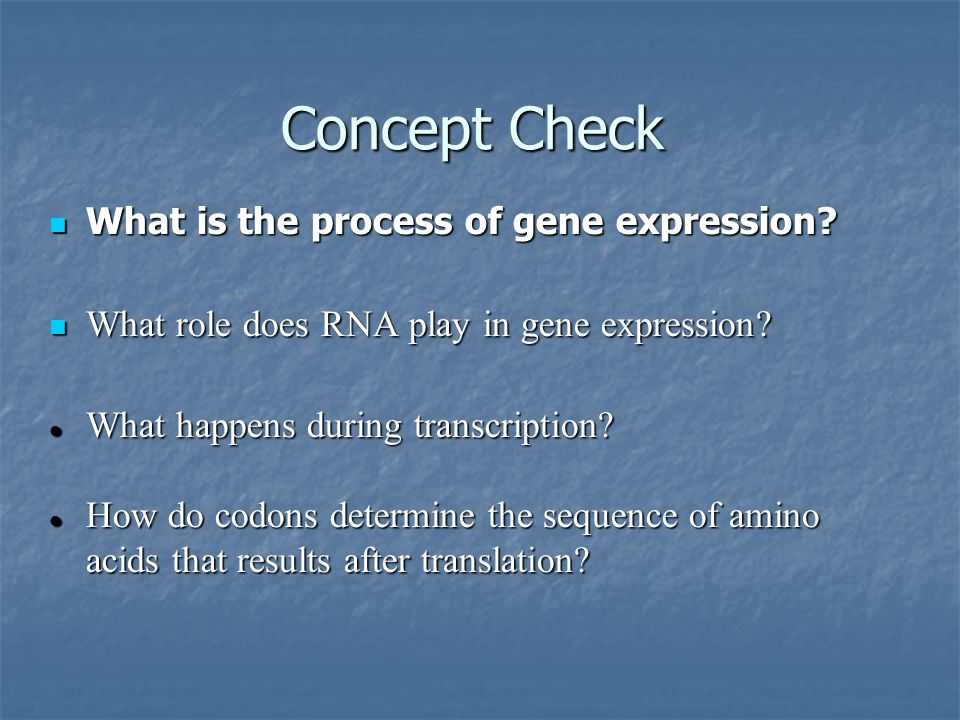 Concept Check What is the process of gene expression