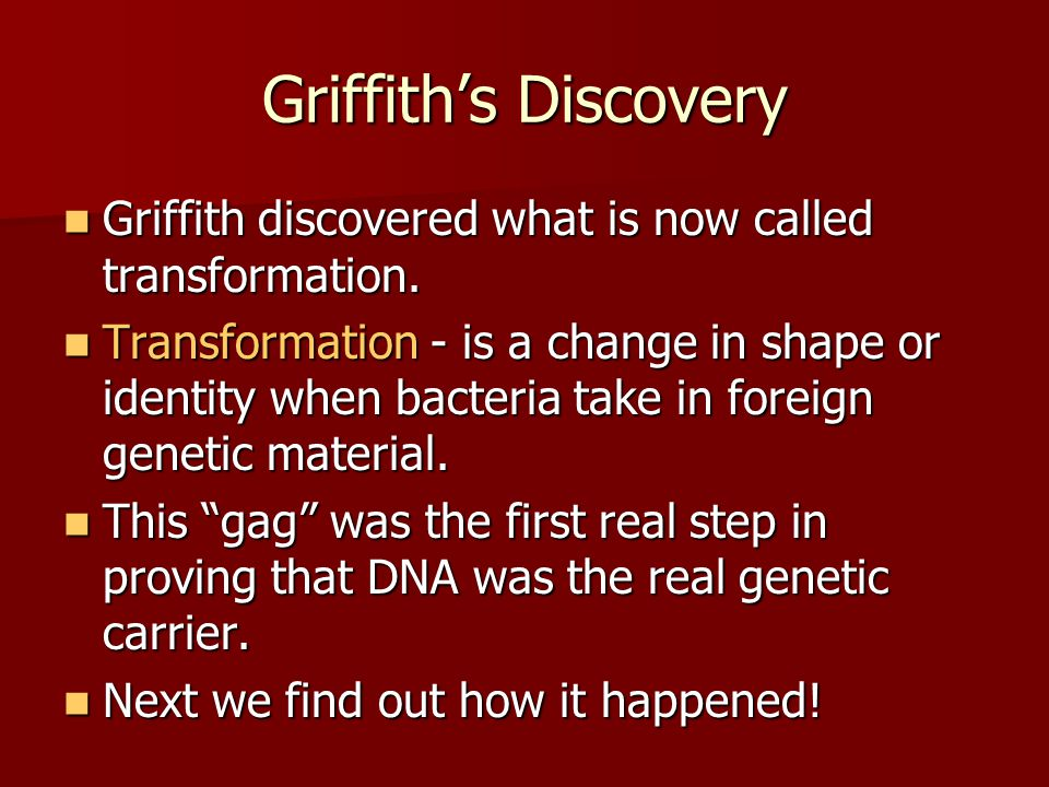 Griffith's Discovery Griffith discovered what is now called transformation.
