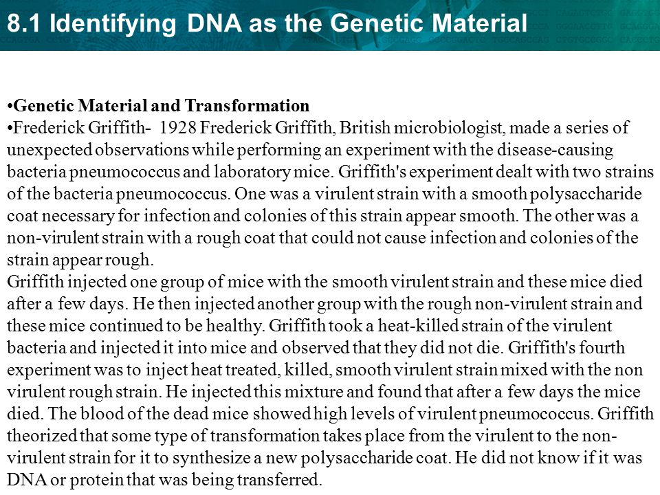 Genetic Material and Transformation