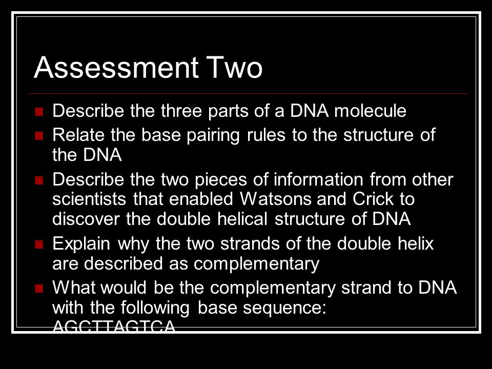 Assessment Two Describe the three parts of a DNA molecule
