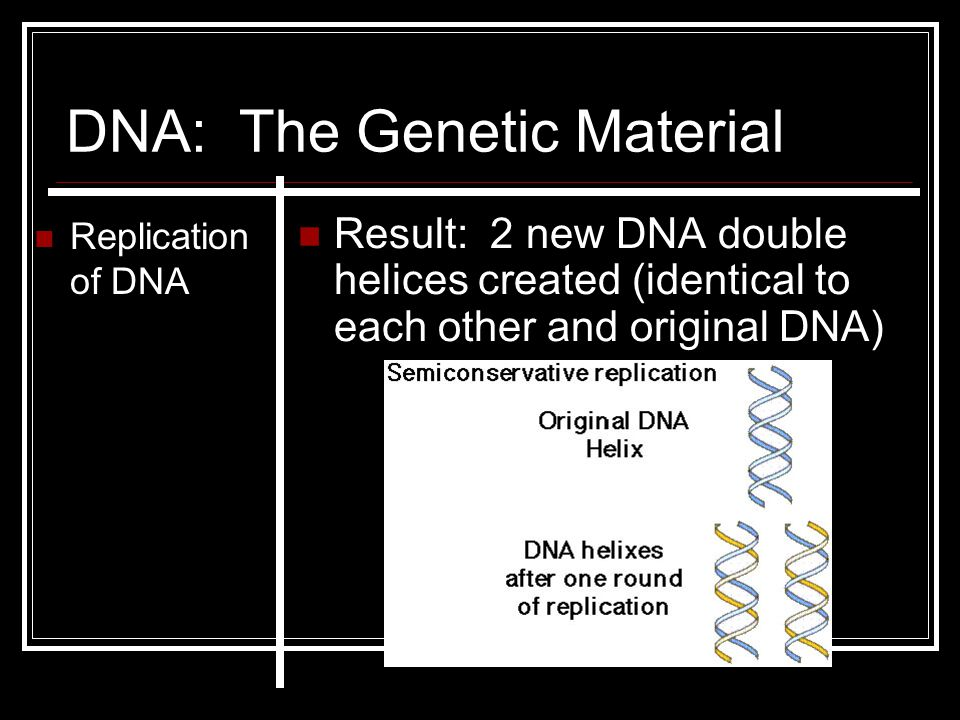 DNA: The Genetic Material