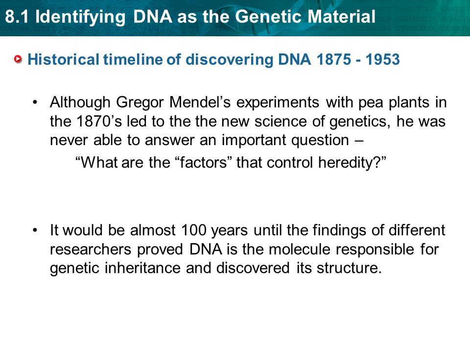 Historical timeline of discovering DNA 1875 - 1953