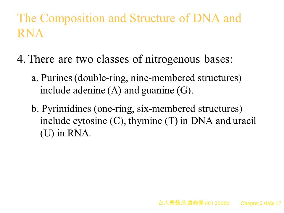 The Composition and Structure of DNA and RNA