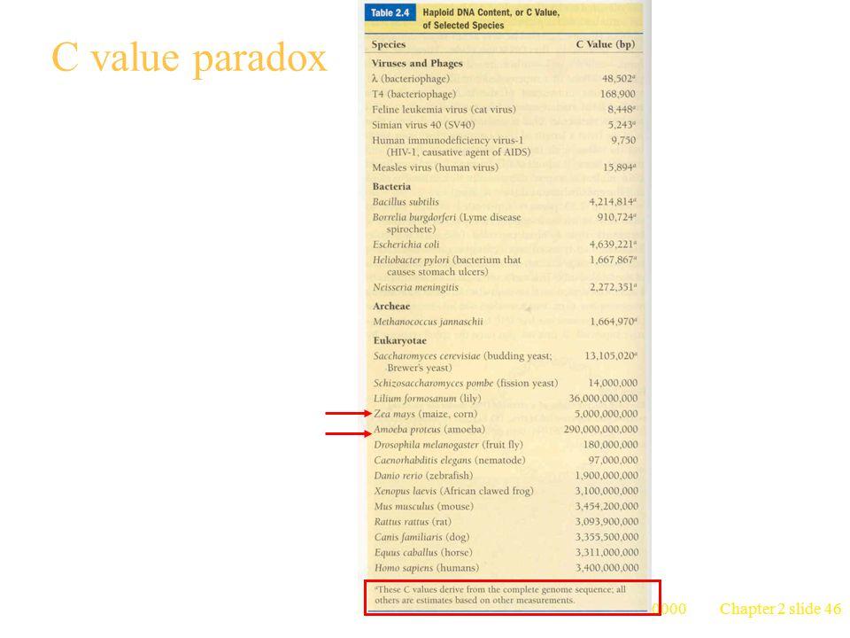 C value paradox 台大農藝系 遺傳學 601 20000